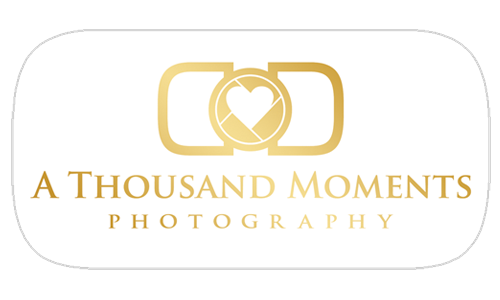 A Thousand Moments logo